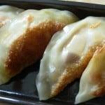 smoked tofu gyoza