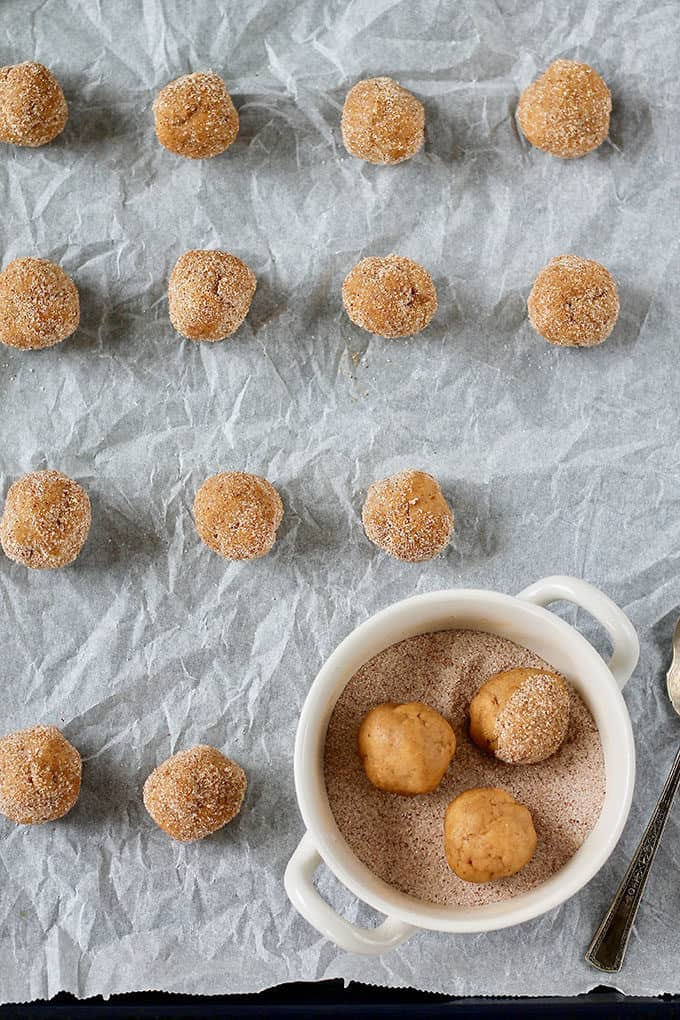 pumpkin snickerdoodle dough rolled into balls and covered in sugar