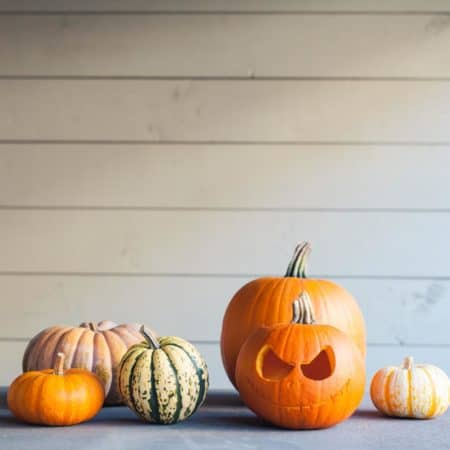 jack o lantern and other pumpkins on a grey background