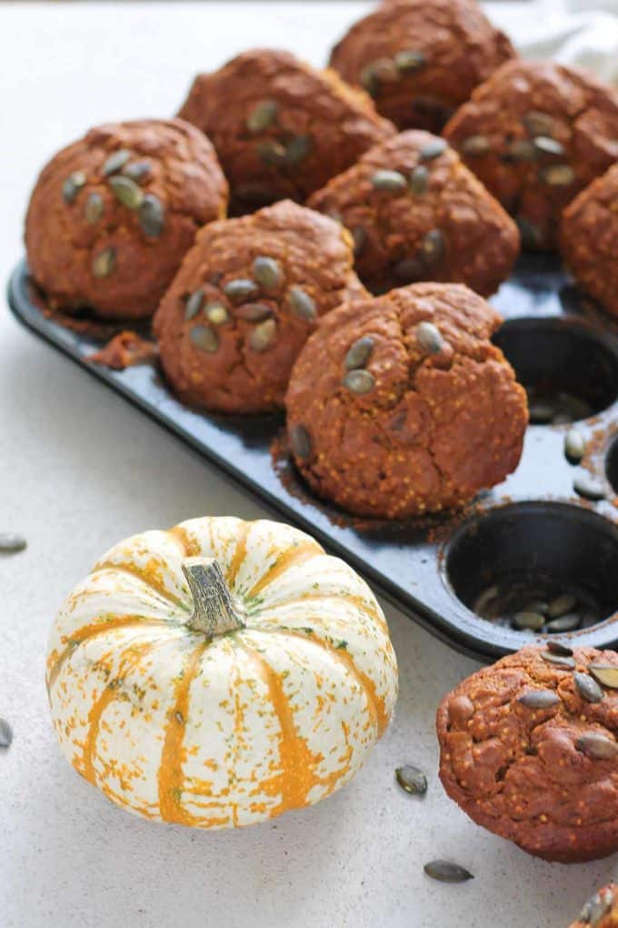 healthy pumpkin muffins in a muffin tin with a small decorative pumpkin to the side