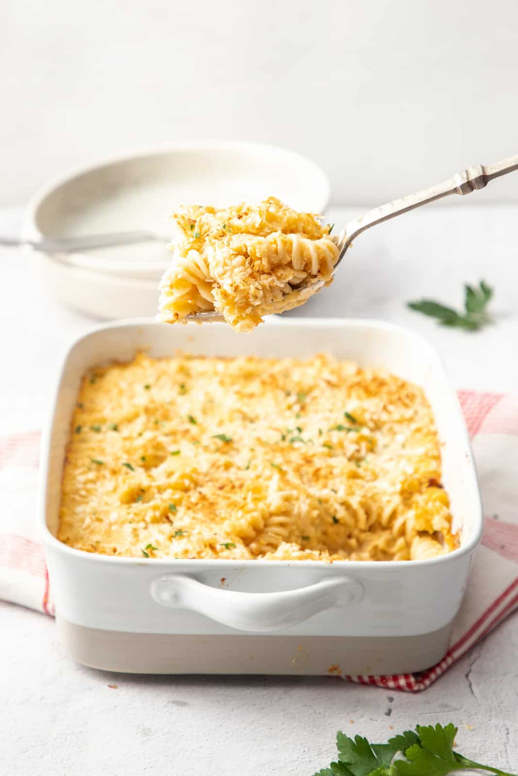 cheesy cauliflower pasta bake in a white casserole dish with a scoop of pasta being held overhead