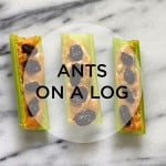snack attack! ants on a log