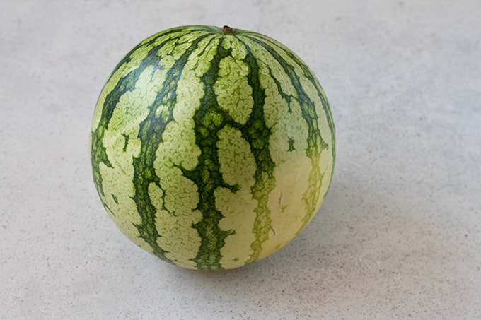 a whole watermelon on a grey background