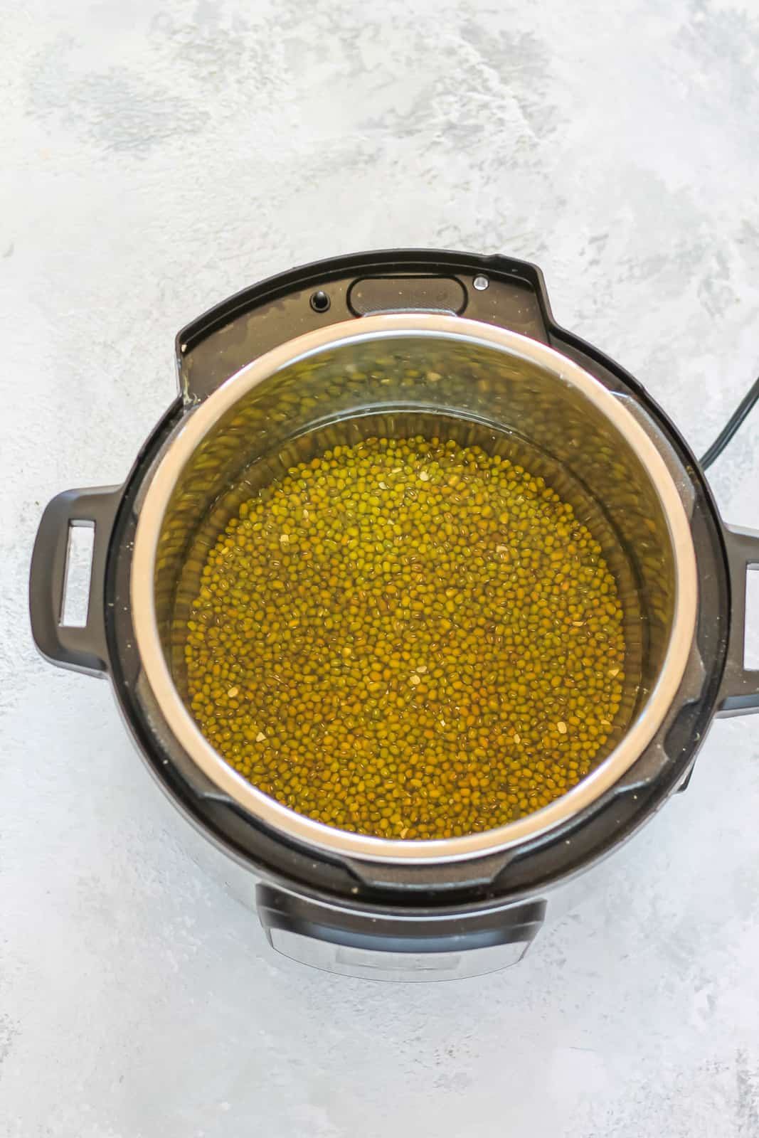 mung beans and water in an instant pot