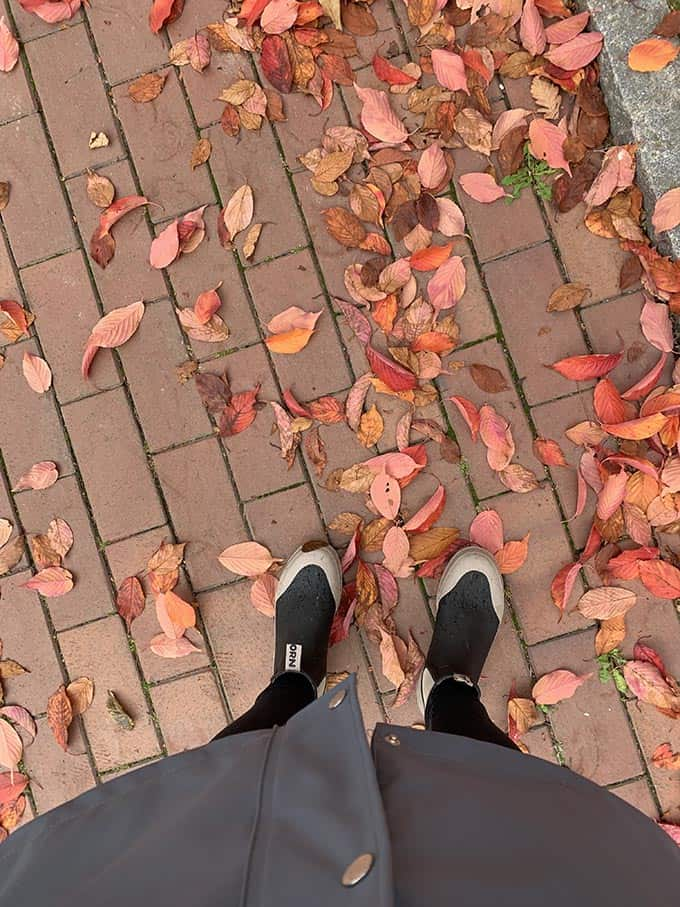 a pair of boots with red leaves on the sidewalk