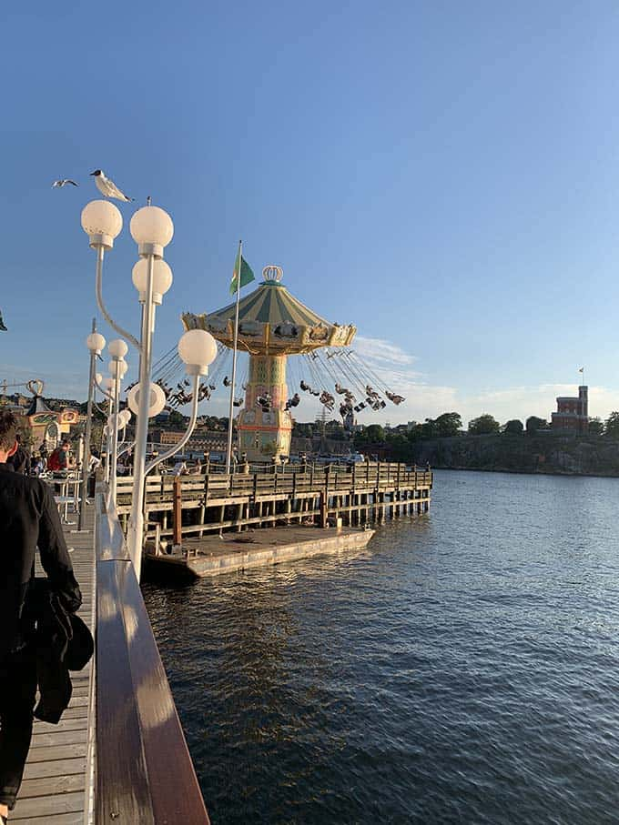 an amusement park with swings over the water