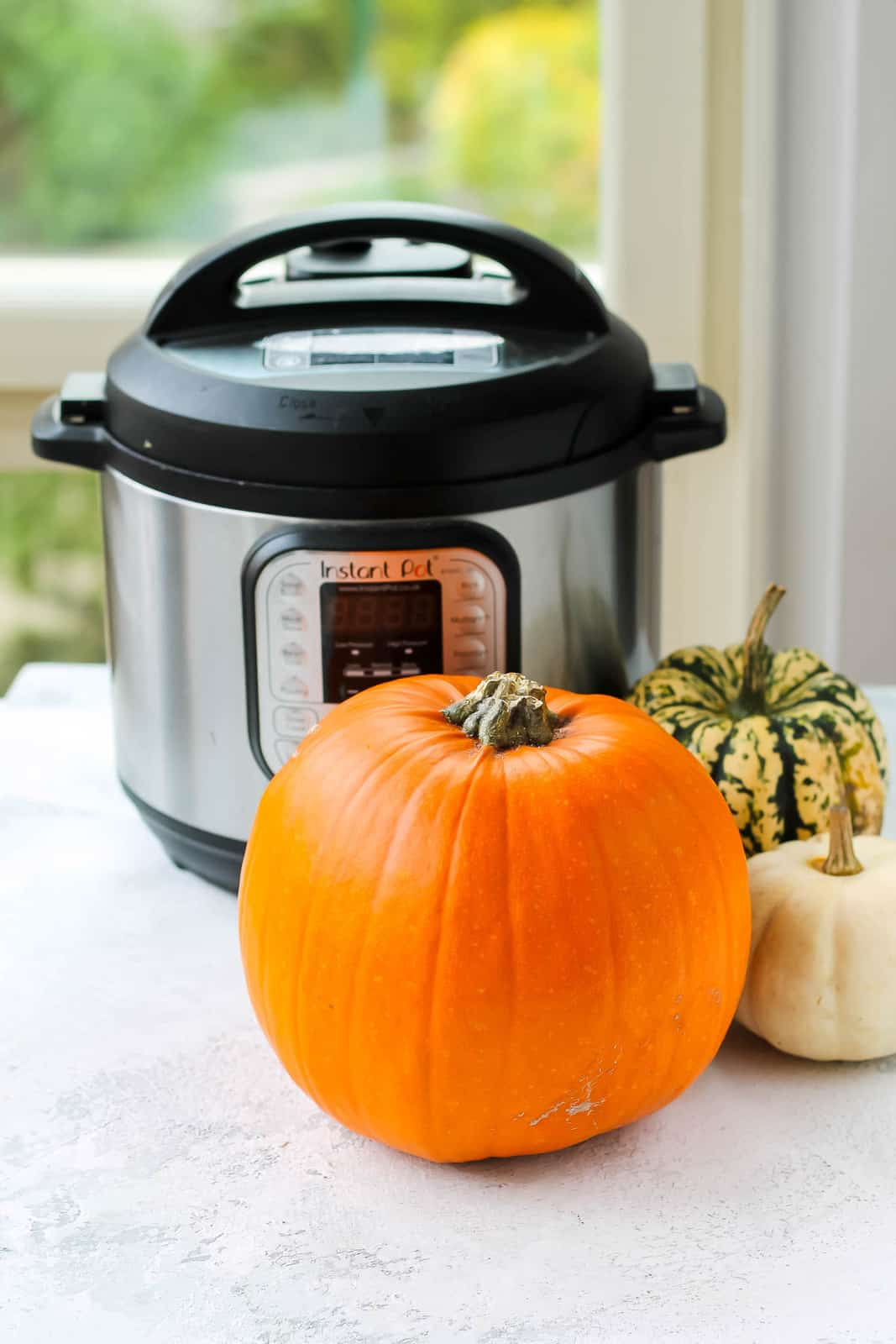 a pumpkin and two smaller squash in front of an instant pot