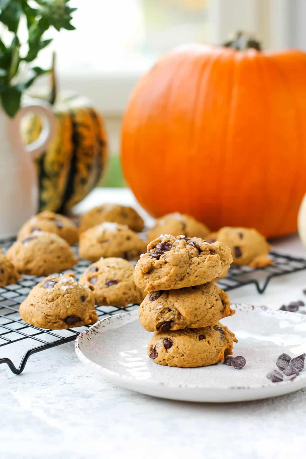 three vegan pumpkin chocolate chip cookies stacked on a white plate with a pumpkin in the background